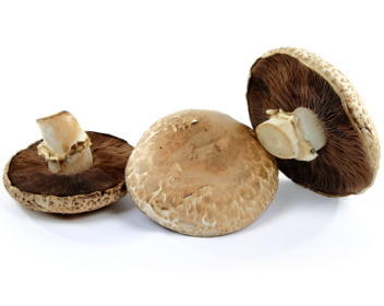 Как готовить грибы мартобелла
